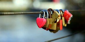 love-locks-4062562.jpg